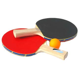 Першість настільного тенісу