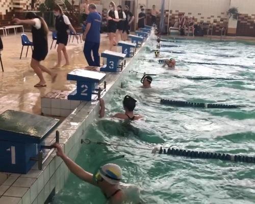 Чемпіонат з плавання в ластах